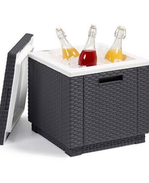 Garden Ice Cube Table