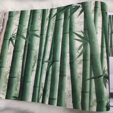 Bambo wallpaper