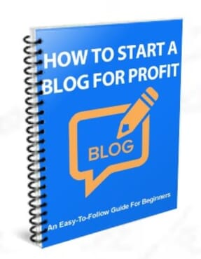Blogging and Profit Note for Beginners